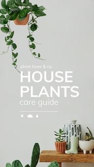Guide de soins vectoriels pour les amoureux des plantes