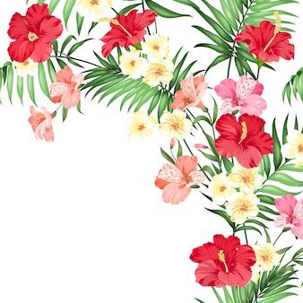 Guirlande de fleurs tropicales.