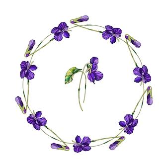 Guirlande florale de vecteur de fleurs de violettes.