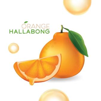Hallabong orange de l'île de jeju