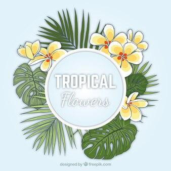 Hand drawn fleurs exotiques avec des feuilles de palmier de fond