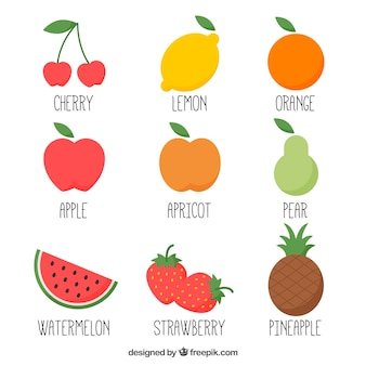 Hand drawn variété de fruits