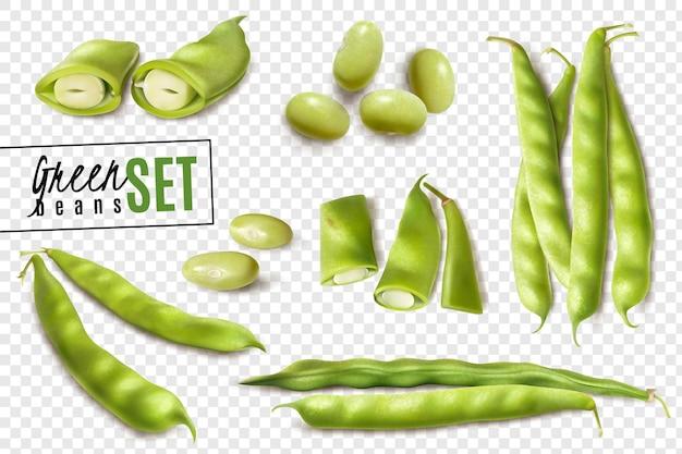 Haricots verts biologiques du marché fermier frais ensemble réaliste avec des gousses entières et coupées sur transparent