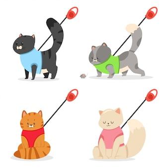 Harnais et laisse pour chat