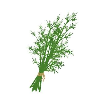 Herbe d'aneth attachée avec une corde source d'ingrédients vitaminés pour les repas végétariens et un mode de vie sain