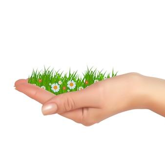 Herbe et fleurs à la main