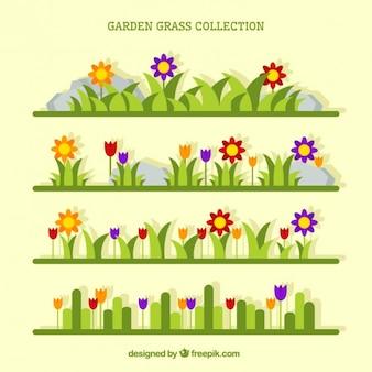 Herbe de jardin avec des fleurs