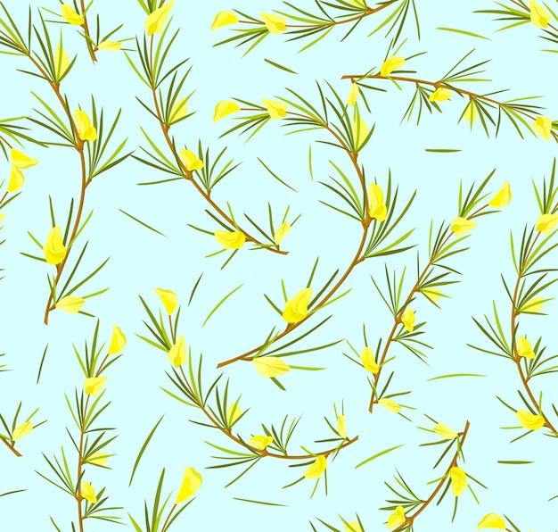 Herbe de rooibos avec des fleurs et des feuilles de thé rooibos modèle sans couture