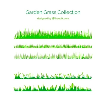 L'herbe verte de collection de jardin