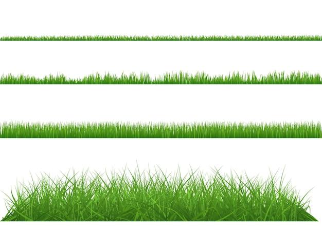 Herbe verte dense, grande et petite.