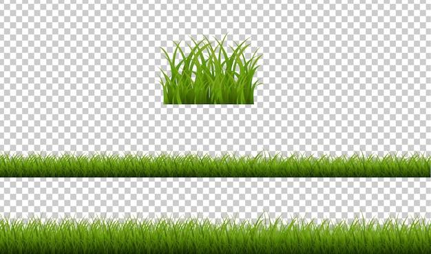 Herbe verte isolée sur fond transparent