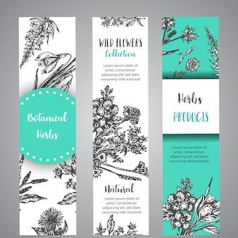 Herbes dessinées à la main et bannières de fleurs sauvages collection florale vintage avec des fleurs sauvages