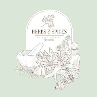 Herbes et épices, bannière d'illustration