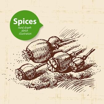 Herbes et épices de cuisine. fond vintage avec des graines de pavot croquis dessinés à la main