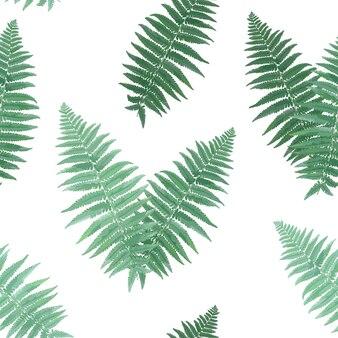 Herbes et feuilles modèle sans couture botanique. fond naturel de feuille de fougère. conception de plantes de champ de forêt florale pour la décoration tropicale d'impression de papier peint. illustration vectorielle