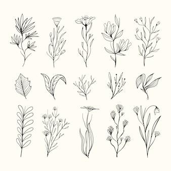 Herbes réalistes dessinées à la main et fleurs sauvages