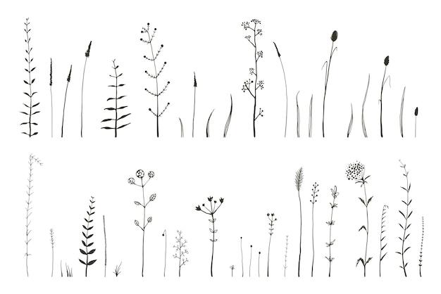 Herbes sauvages monochromes dessinés à la main, herbes et éléments graphiques de fleurs sauvages isolés.