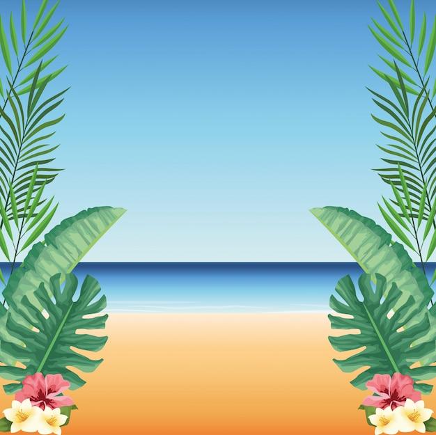 Heure d'été dans la plage feuilles tropicales fleurs monstera hibiscus sable mer