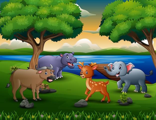 Heureux animal différent jouant au bord de la rivière