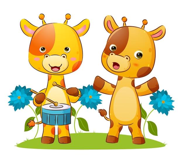 L'heureux couple de girafe joue du tambour et frappe pour faire une illustration sonore