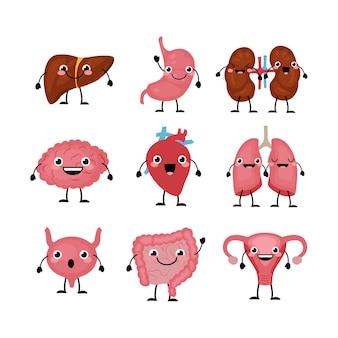 Heureux personnages d'organes mignons souriants dans un style cartoon plat.