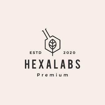 Hexagon leaf labs hipster logo vintage icône illustration