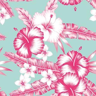 Hibiscus et feuilles