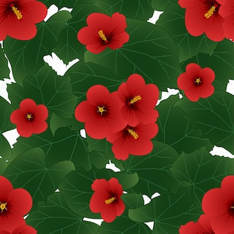 Hibiscus syriacus rouge - rose de sharon