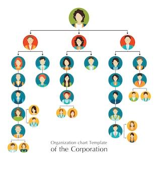 Hiérarchie métier de la charte organisationnelle