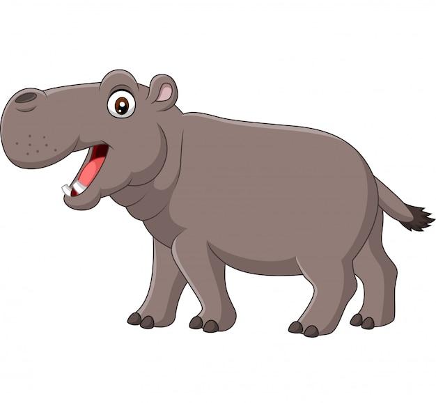 Hippo souriant dessin animé isolé sur fond blanc