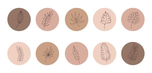 L'histoire organique abstraite de vecteur a défini des modèles de couverture.