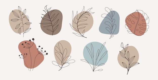 L'histoire organique abstraite de vecteur met en évidence les modèles de couverture isolés sur fond blanc. illustration botanique dans des tons neutres de terre. ensemble d'éléments de conception hipster