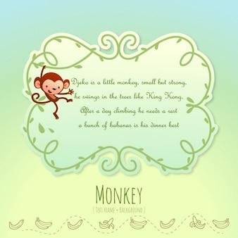 Histoires des animaux, singe