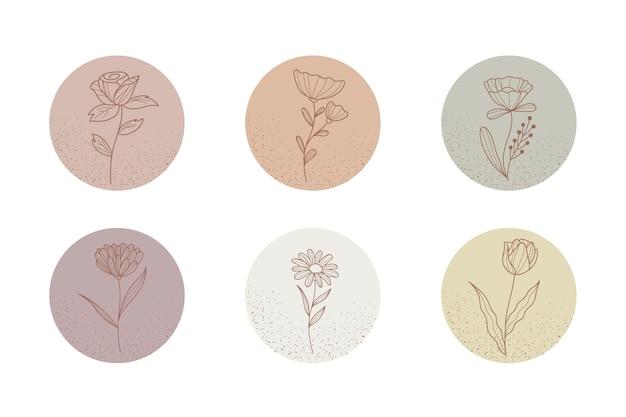 Histoires florales dessinées à la main instagram