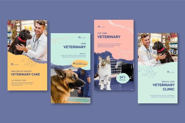 Histoires instagram vétérinaires