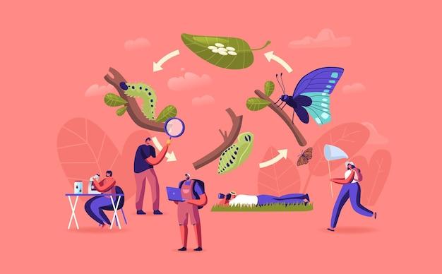 Hobby d'entomologie ou occupation professionnelle. des entomologistes, des scientifiques ou des amateurs, créent une collection d'insectes faits maison, recherchent et étudient la nature sauvage, la faune. illustration vectorielle de gens de dessin animé