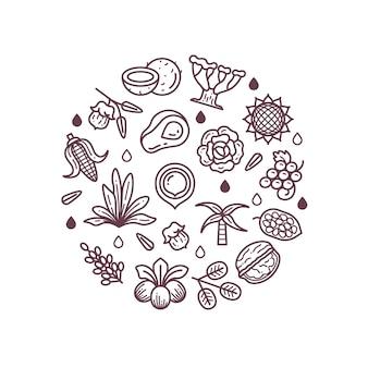 Huile de cosmétiques bio fleur sain linéaire isolé
