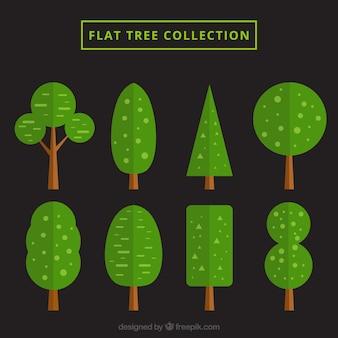 Huit arbres plats