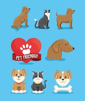 Huit icônes adaptées aux animaux de compagnie