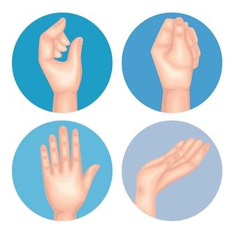 Humains à quatre mains