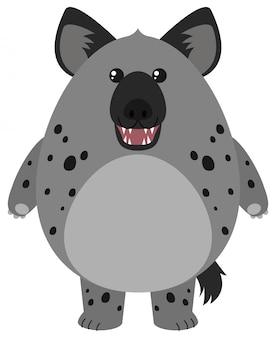 Hyène avec corps rond