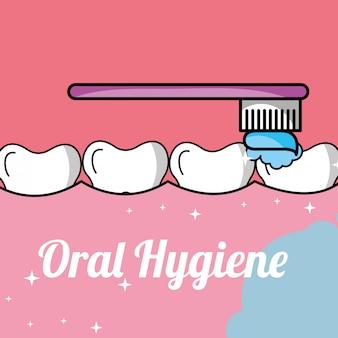 Hygiène bucco-dentaire brossage des dents et des gencives dans la bouche