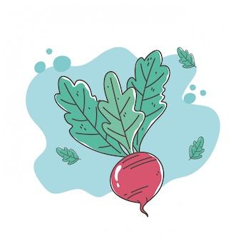 Icône de betterave aux légumes biologiques