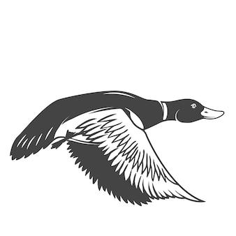 Icône de canard sauvage sur fond blanc. éléments pour logo, étiquette, emblème, signe. illustration