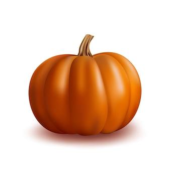 Icône de citrouille orange réaliste sur blanc pour la décoration halloween