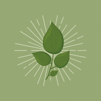 Icône de feuilles vertes