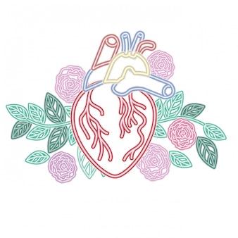 Icône isolé de coeur avec des veines et des fleurs