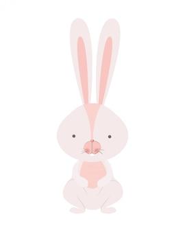 Icône isolé de lapin mignon