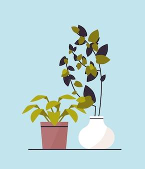 L'icône de plantes en pot à effet de serre de plantation de jardin botanique concept vector illustration