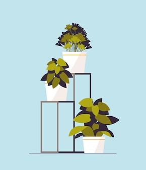 Icône de plantes en pot plantation concept de jardin botanique à effet de serre